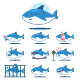 Cute Cartoon Shark Vector Character Set. - GraphicRiver Item for Sale