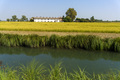 Landscape along the canal of Bereguardo at summer - PhotoDune Item for Sale