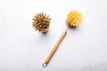 Eco friendly plant based cleaning brushes - PhotoDune Item for Sale