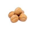 walnut on white - PhotoDune Item for Sale