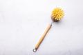 Eco friendly plant based cleaning brush - PhotoDune Item for Sale