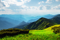Lush green grass covered mountains meadow - PhotoDune Item for Sale