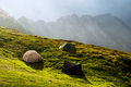 Green tent in spring mountains - PhotoDune Item for Sale