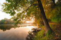 Autumn foliage lake in morning with pier - PhotoDune Item for Sale