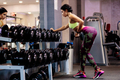 athletic woman weightlifting dumbbells workout in gym. fitness model - PhotoDune Item for Sale