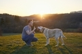Man teaching his dog on meadow at sunset - PhotoDune Item for Sale
