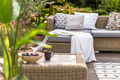 Green sunmer garden - PhotoDune Item for Sale