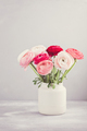 Bouquet of pink and white ranunculus flowers - PhotoDune Item for Sale