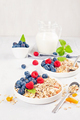 Homemade granola or oatmeal muesli with nuts, dried fruits and fresh berries - PhotoDune Item for Sale