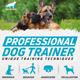 Dog Trainer Flyer/Poster - GraphicRiver Item for Sale