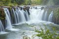 Beautiful waterfall in Laos - PhotoDune Item for Sale