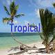 Tropical Summer Pop - AudioJungle Item for Sale