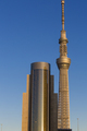 Skytree is the world's second tallest structure, Tokyo - PhotoDune Item for Sale