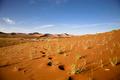 Desert of Sossusvlei in Namibia - PhotoDune Item for Sale