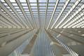 Futuristic Liege-Guillemins railway station - PhotoDune Item for Sale