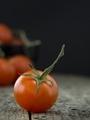 Cherry Tomato - PhotoDune Item for Sale
