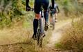 rear wheel mountain bike - PhotoDune Item for Sale