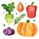 Vegetables Clip Art. Pumpkin, Greenery, Radish, Pepper, Onion. - GraphicRiver Item for Sale