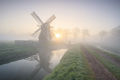 beautiful misty sunrise in Dutch countryside with windmill - PhotoDune Item for Sale