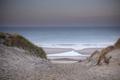 sand dune path to sea beach at dusk - PhotoDune Item for Sale