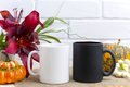 White and black mug mockup with pumpkin and red lily - PhotoDune Item for Sale