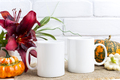 Two coffee mug mockup with pumpkins and lily - PhotoDune Item for Sale