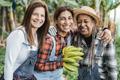 Multiracial senior women working at banana plantation - Main focus on center woman face - PhotoDune Item for Sale