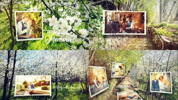 Spring Lovely Wedding Photo Slide