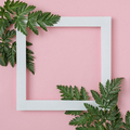 White frame on a pink pastel background - PhotoDune Item for Sale