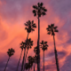 Summer Upbeat - AudioJungle Item for Sale