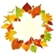 Vector autumn frame with fall leaf, chestnut, acor - GraphicRiver Item for Sale