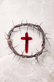 Crucifix made of blood, crown of thorns. Good friday. Easter holiday. Christian cross painted with - PhotoDune Item for Sale