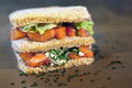 Smoked salmon in a sandwich - PhotoDune Item for Sale