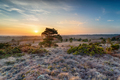 Beautiful sunset over Winfrith Heath - PhotoDune Item for Sale