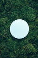 Creative layout made of circle card note on green grass, moss background. Top view. Copy space - PhotoDune Item for Sale