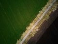 Aerial drone top view flight over ground land road and green field - PhotoDune Item for Sale