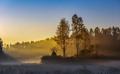 Sunrise misty forest landscape at autumn time. - PhotoDune Item for Sale