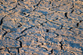 Close up texture background of the takir soil - PhotoDune Item for Sale