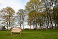Wooden bench with gorgeous view at public park - PhotoDune Item for Sale