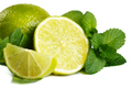 Fresh lime and mint. Isolated on white background - PhotoDune Item for Sale
