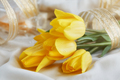 Yellow tulips, perfume and gold ribbon - PhotoDune Item for Sale