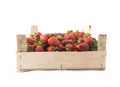 Strawberries in wooden box isolated over white background - PhotoDune Item for Sale