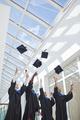 Group of graduates throwing caps in sunlight - PhotoDune Item for Sale