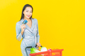 Portrait beautiful young asian woman smile with grocery basket - PhotoDune Item for Sale