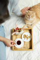 Woman sitting on the bed, and drink coffee, cat feeding during the morning sunlight, - PhotoDune Item for Sale