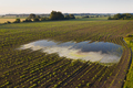 Rural scene with a flooded field in summer nature from drone - PhotoDune Item for Sale