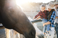 Parents with little son having fun a horse at farm ranch - PhotoDune Item for Sale