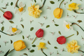 Many different spring flowers on a green background - PhotoDune Item for Sale