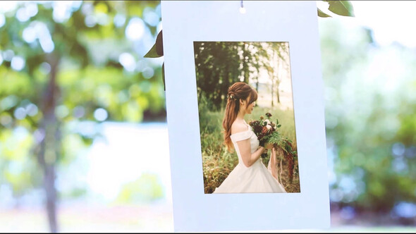 Photo Gallery Under Tree