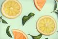 Citrus slices - PhotoDune Item for Sale